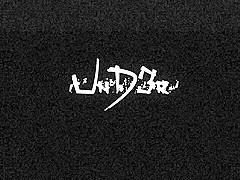 UnD3r HydroZebra