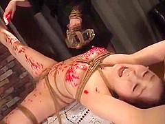japanese femdom cmc-198 b